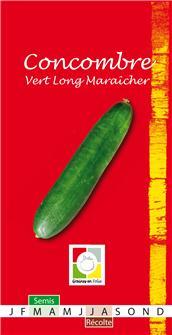 Concombre Vert Long Maraîcher AB