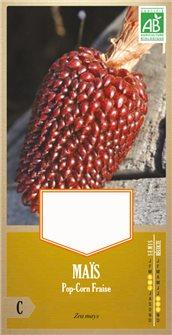 Maïs fraise pop corn AB bio