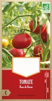 Graines de tomate rose de Berne