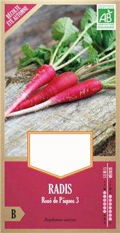 Graines de radis rose de Pâques 3 ou 5 semaines rose 3